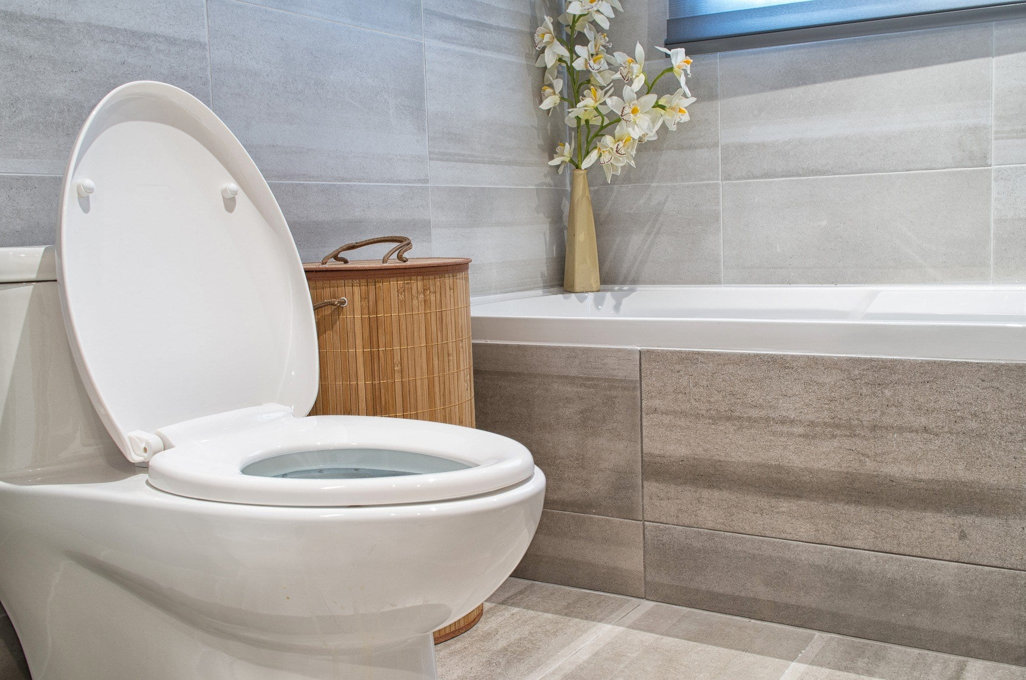 How to know when to Replace a Toilet? 1