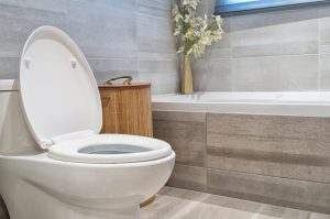 Toilet Replacement and Toilet Repair